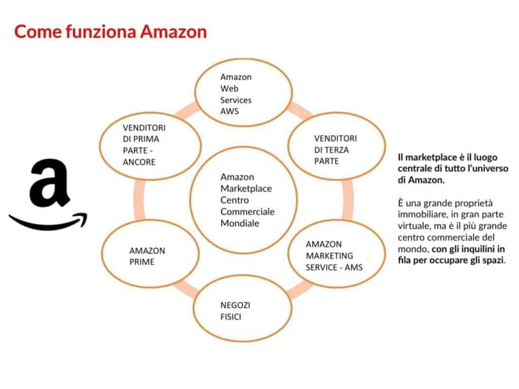 comprendere Amazon | M101